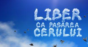 liber ca pasarea cerului
