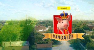 Mangalita